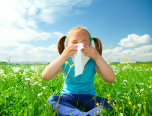 Seasonal Allergies: 4 Routes to Relief