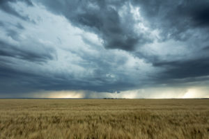 Summer Storm & Lightning Safety, What You Need to Know