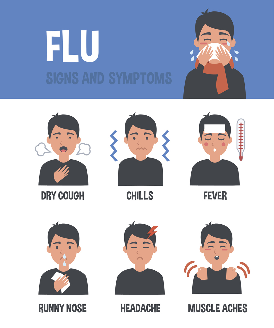 flu adult signs and symptoms